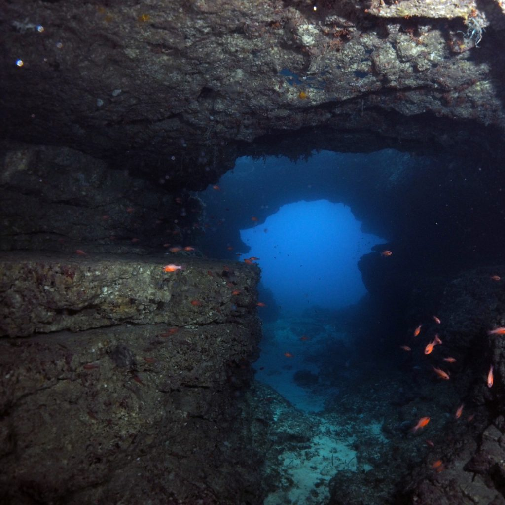 Coral Cave and Crocodile Rock