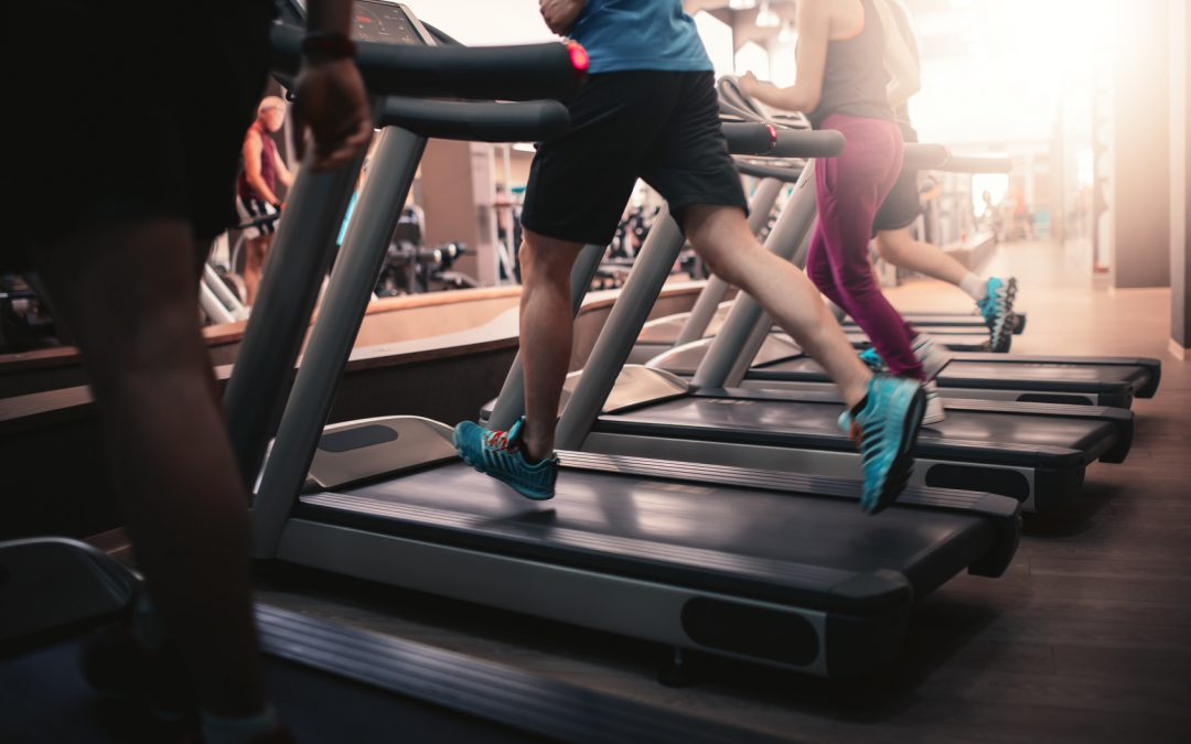 The Best Gyms in Malta: Which Suits Your Needs?
